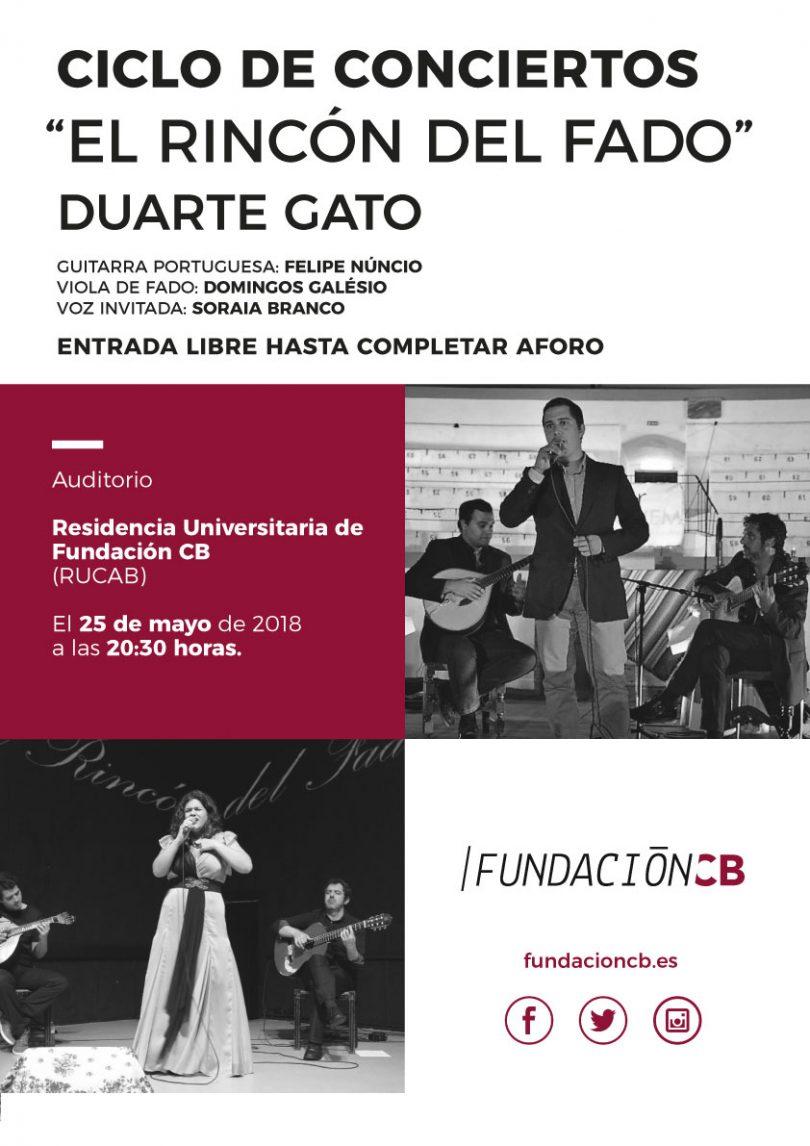 concierto-duarte-gato